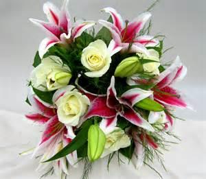 stargazer bouquet stargazers and white roses chester s flower shop