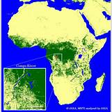 Rainforest In Africa Map | 540 x 556 jpeg 281kB