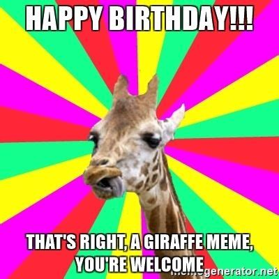 You Re Right Meme - best 25 birthday memes ideas on pinterest happy