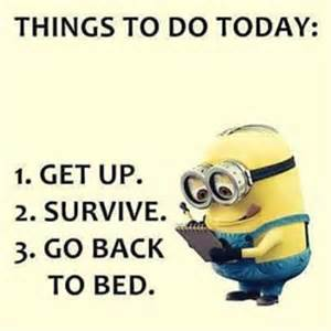 25 best funny minion quotes on the internet