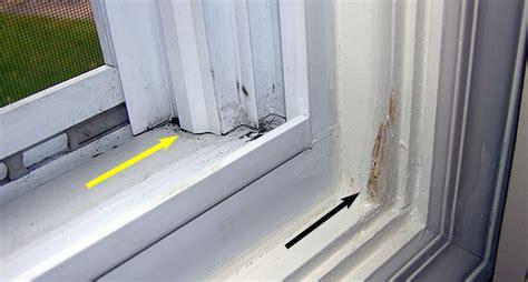Anderson Bow Window leak at bottom of leaky window frame corner