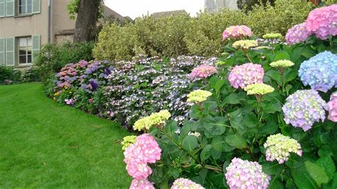 enhance the beauty of your home with a flower garden youtube