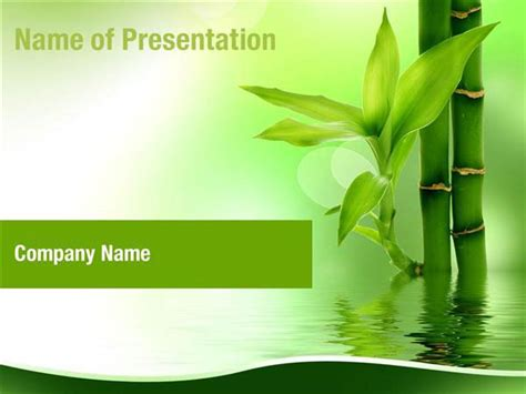 Zen Bamboo Forest Powerpoint Templates Zen Bamboo Forest Powerpoint Backgrounds Templates For Bamboo Powerpoint Template