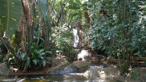 Botanical Gardens Pretoria National Botanical Gardens In South Africa Exclusive Getaways