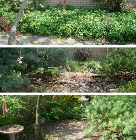 landscaping ideas zen garden home garden design