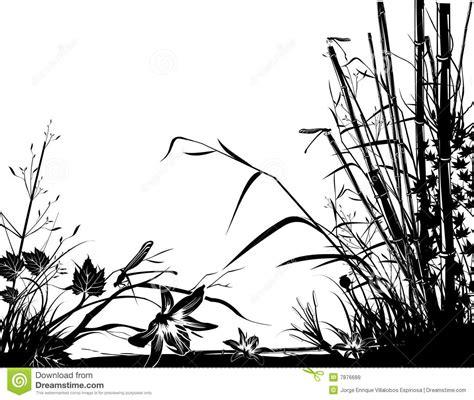 fotos de naturaleza en blanco y negro blog de fotograf 237 a vector blanco y negro de la naturaleza im 225 genes de archivo