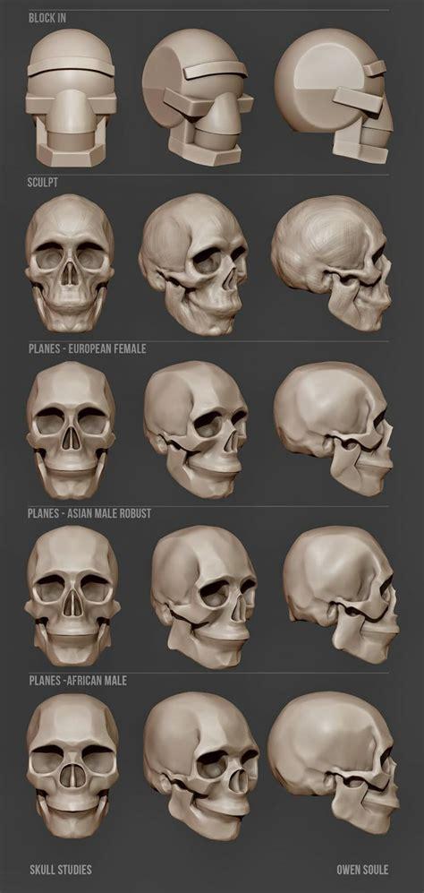 zbrush tutorial skull bone simplify head skull pinterest skulls and bone