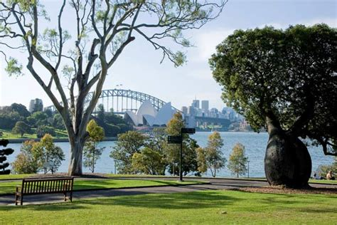 Royal Botanical Gardens Sydney Royal Botanic Gardens Eucalypt Lawn Garden Locations