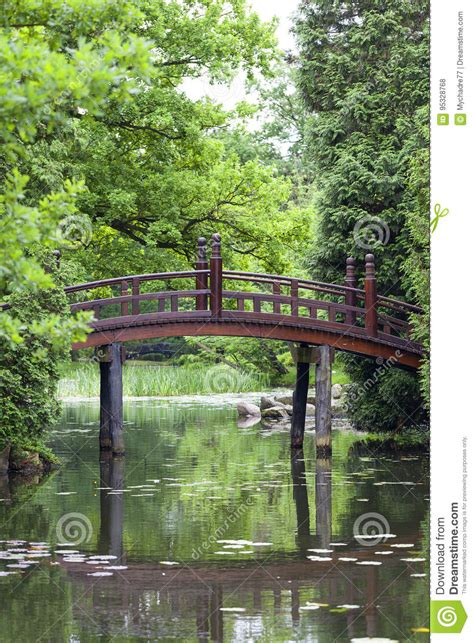 giardino giapponese piante giardino giapponese piante esotiche wroclaw polonia