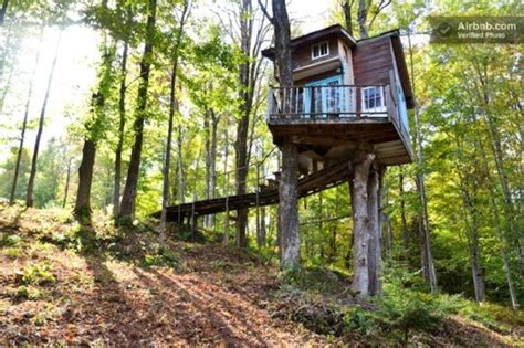 cozy tiny house vacation in america s coolest small town tiny fern forest treehouse provides a cozy vacation