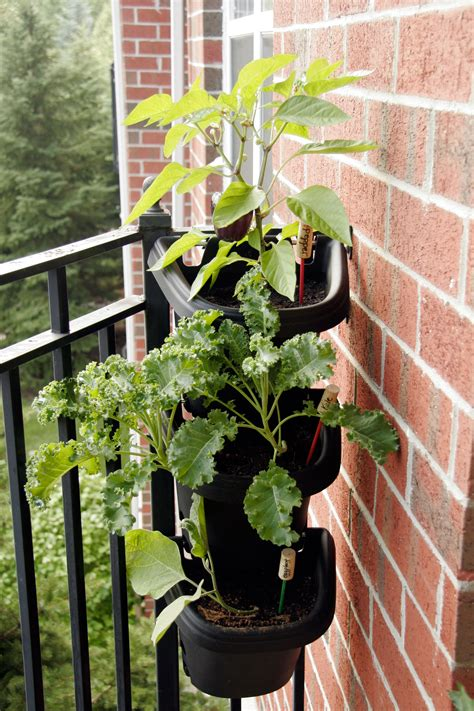 best small hanging plants tips for decorating a small apartment balcony all put