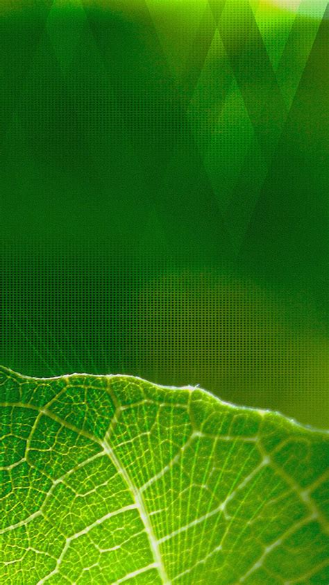 green wallpaper hd android green 720x1280 hd wallpaper android wallpapers free download