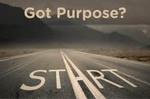 why is it important to define your purpose dan s plan