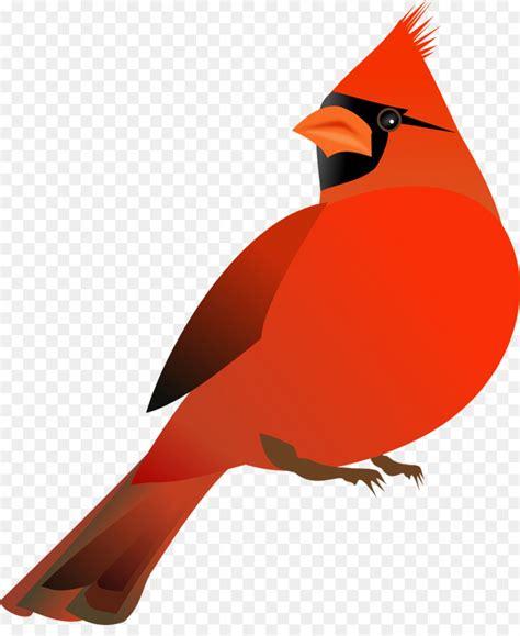 cardinal clip st louis cardinals vector shopatcloth