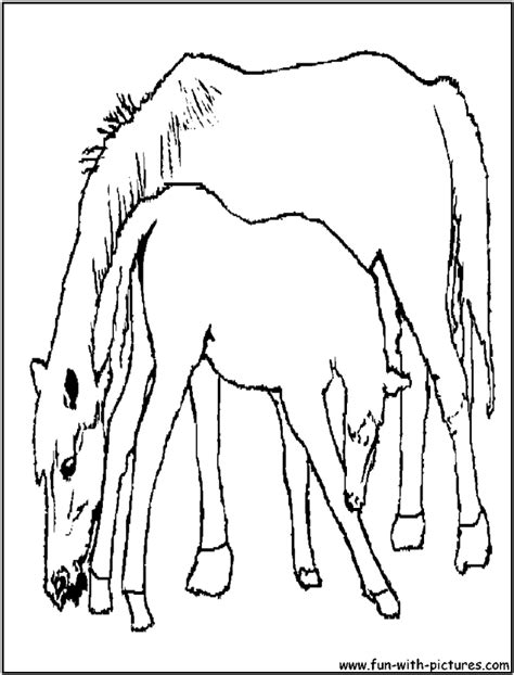 Coloring Pages Of Horses And Foals by Pictures Foal Coloring Pages Foal And Its Picture