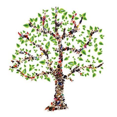 plantillas de decoracion navideñeo arbol c 243 mo hacer un 225 rbol geneal 243 gico familiar espaciociencia