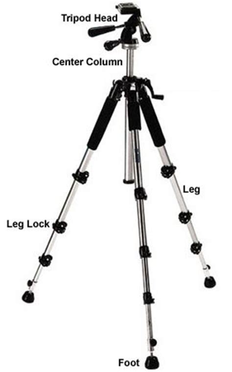 tripod parts diagram tripod buying guide what photographers need to