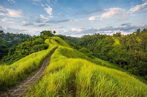 aquascape komang denpasar city bali bali tourism development getting out of control