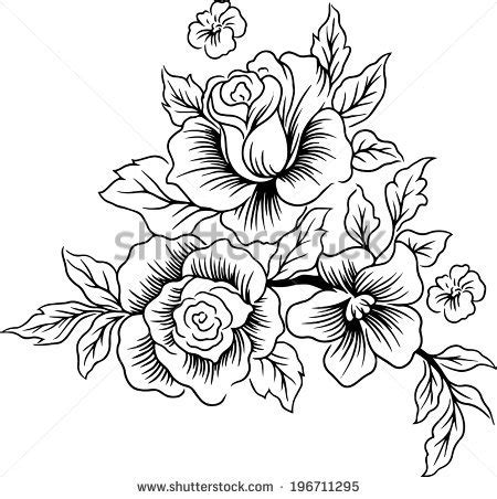 drawings lines beautiful flowers stock vector 196711295