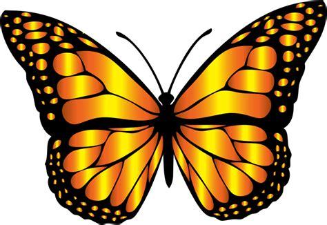 farfalle clipart tre farfalle storia illustrata per i piccoli gratis