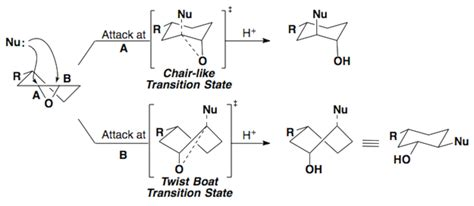 cyclic conformations chemistry libretexts