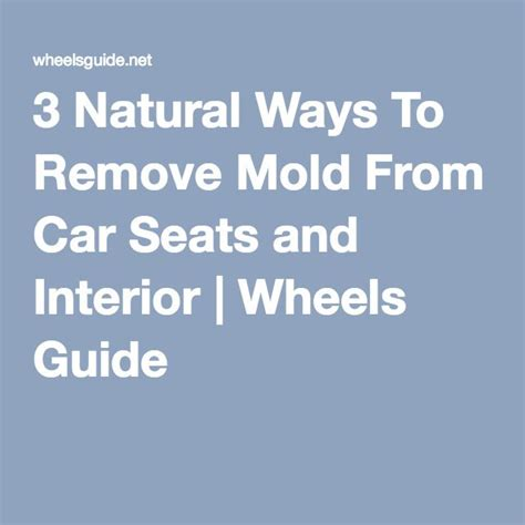 How To Remove Mold From Car Upholstery by 1000 Ideas About Remove Mold On Cleaning Mold