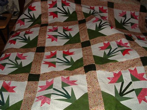 Quilt Carolina by Paper Pieced Carolina Unfinished