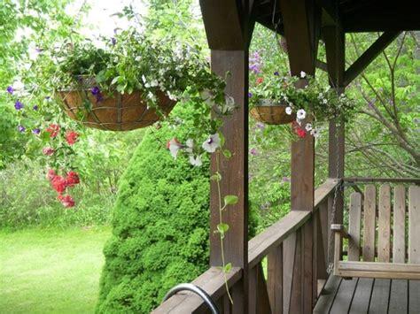 vasi da arredamento vasi da arredamento vasi da giardino consigli per i