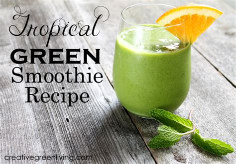 Tropical Smoothie Cafe Recipes Detox Island Green by The 15 Best Smoothies For Your Diet