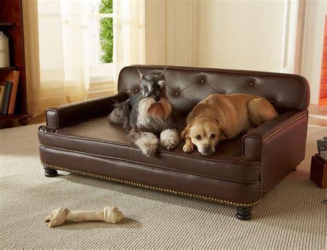 enchanted home pet sofa bed 187 gadget flow