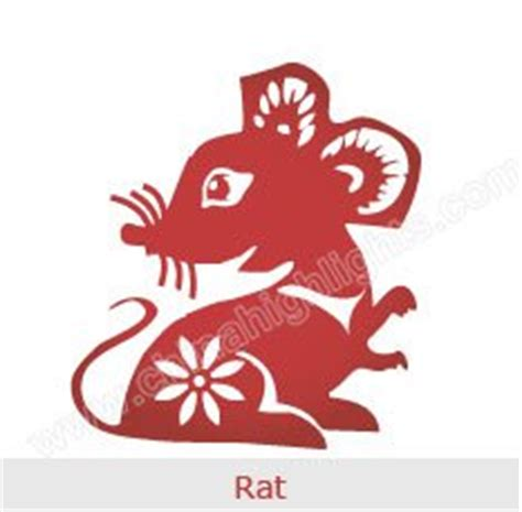 new year what does rat year of the rat zodiac luck personality