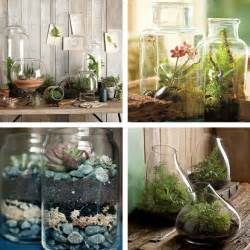 Ideas For Indoor Potted Plants Design Decorating Dilemma House Plants Decorator S Notebook