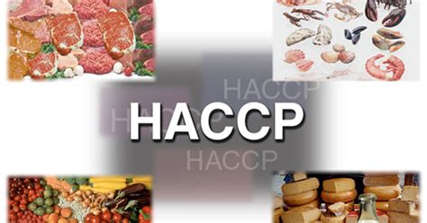 stage tecnologo alimentare hazard analysis critical point haccp food