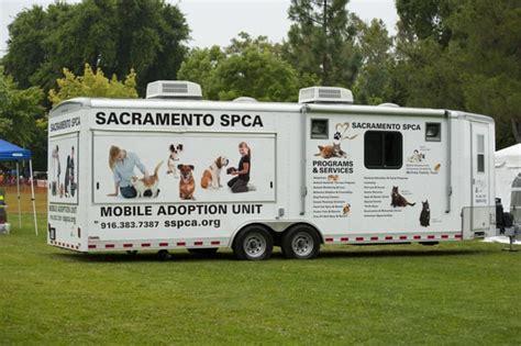 sacramento spca dogs photos for sacramento spca yelp