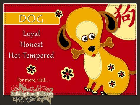 new year november animal zodiac year of the horoscopes