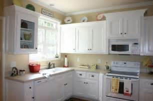 Painting Kitchen Cabinets White by Have The Painting Kitchen Cabinets Ideas For Your Home