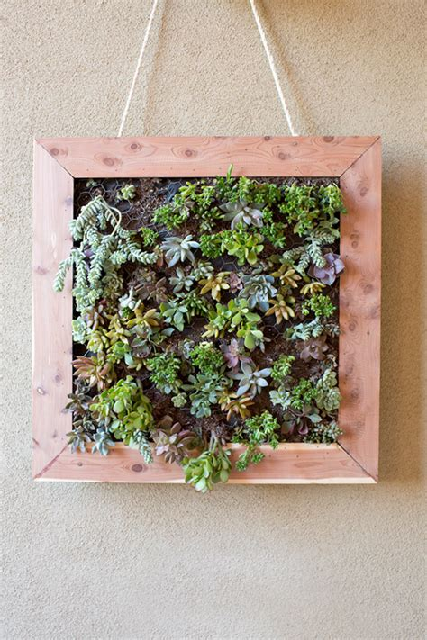 vertical succulent garden tutorial the home depot