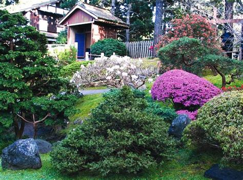 spring landscaping tips gardens with magnolia trees 25 healing backyard ideas to