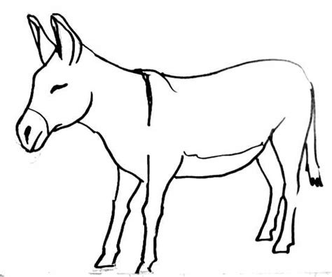 donkey outline template www imgkid com the image kid