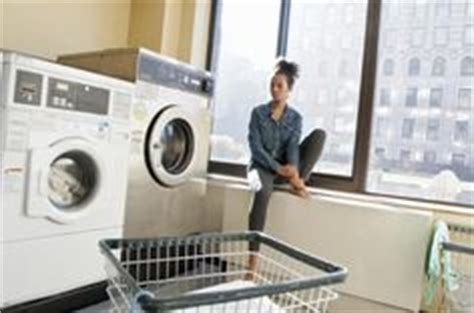 can you get bed bugs from laundromat 1000 images about get rid of insects that eat clothes us on pinterest carpets
