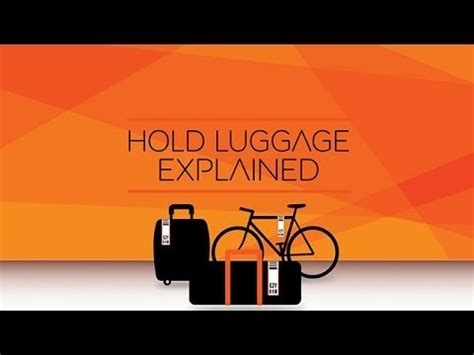 cabin bags and hold luggage easyjet