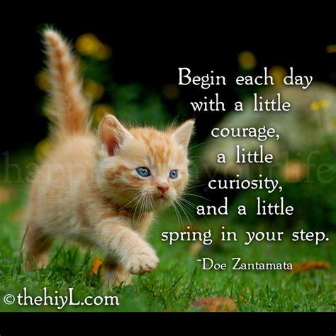 Doe Zantamata Quotes: Begin each day...