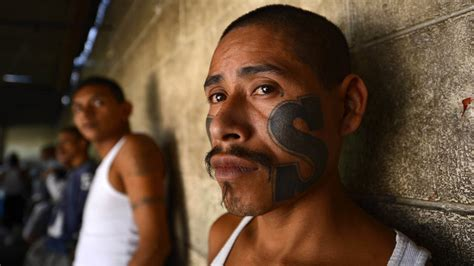 the scope of san diegos gang problem voice of san diego el salvador s new president faces gangs poverty and