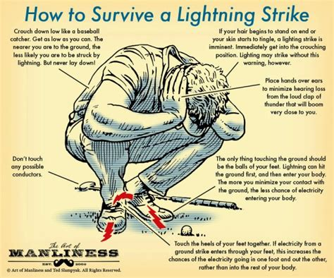 the gaslight effect how to spot and survive the manipulation others use to your books tywkiwdbi quot wiki widbee quot the path lightning takes