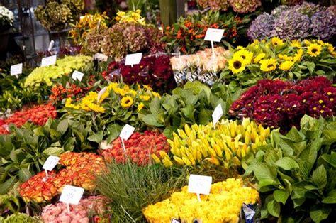 mercato fiori mercato dei fiori a amsterdam fiere e mercatini a amsterdam
