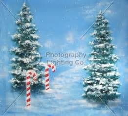 christmas photography backdrops and backgrounds for family photos