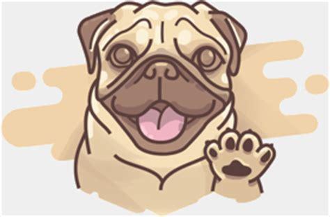 study pug studypug image mag