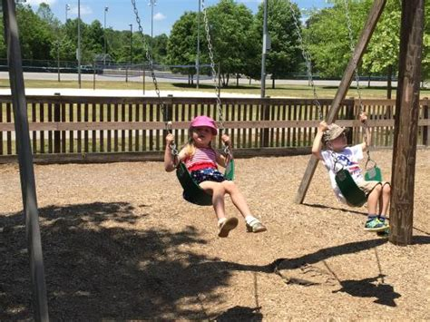 swing asheville swings at park picture of carrier park asheville