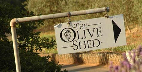 How To Stop A From Shedding Olive by Tokara Winery Stellenbosch