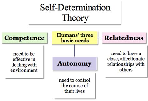 Shelf Determination by What Is Self Determination Theory Pdf
